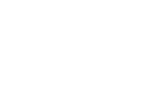 245 Kingston Village Logo